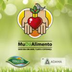 Campanha da Afubra incentiva a troca de alimentos não perecíveis por mudas de árvores