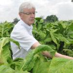 Aos 66 anos, Afubra busca propriedade ainda mais autossustentável