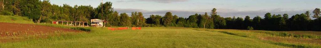 Field-BG