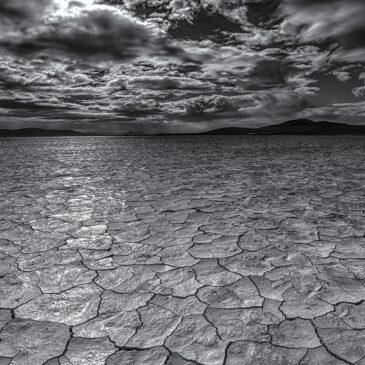 Alvord Playa Lake – 11 November 2016