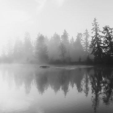 Mudd Bay Fog – February 22, 2008