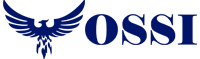 OSSI – Professional IT Services for Business