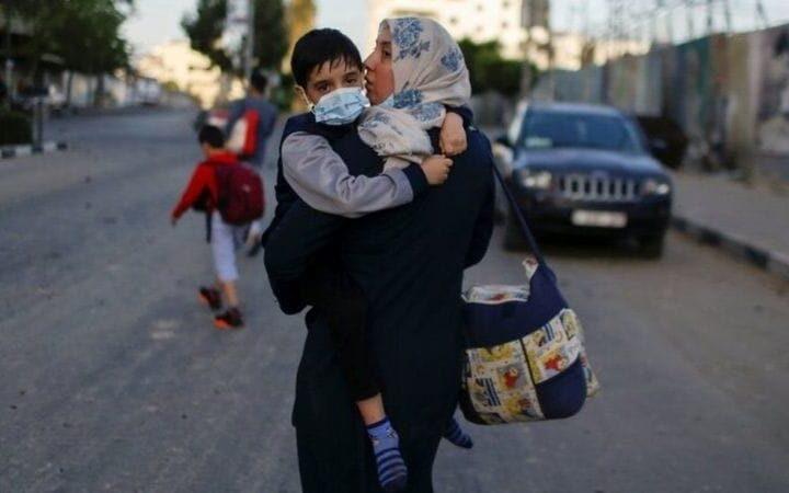 Palestine-Ardeshir