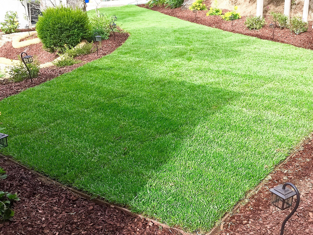 Ed's Landscaping Sod and garden with mulch