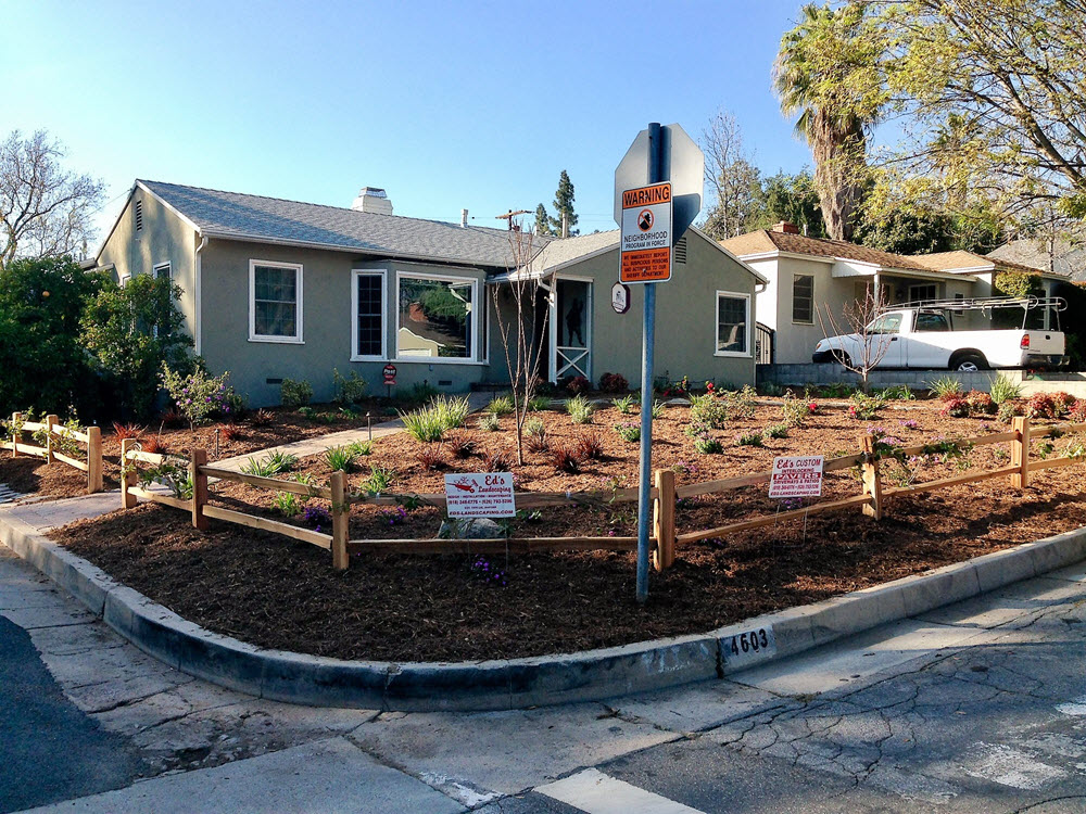 Ed's Landscaping Front yard planting completed