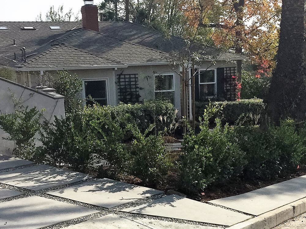 Ed's Landscaping New York St. Dyed Cement Slab and landscaping project