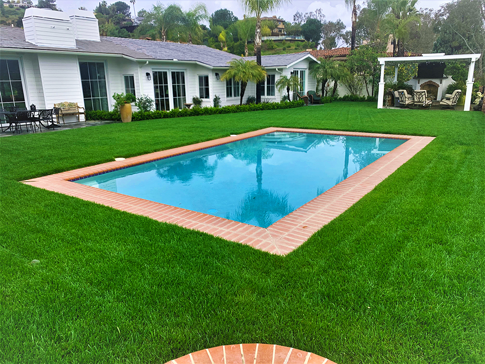 Eds Landscaping Pool-lawn-outdoor living areas