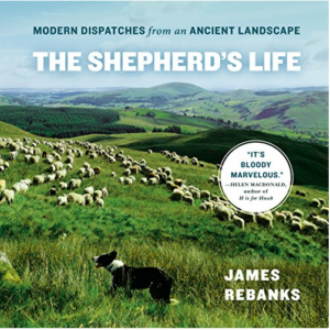 The Shepherd's Life: Modern Dispatches from an Ancient Landscape Audiobook