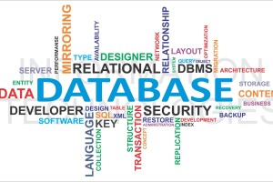 Custom Business Applications, Database