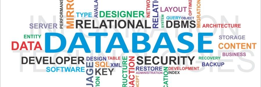 Custom Business Applications, Database
