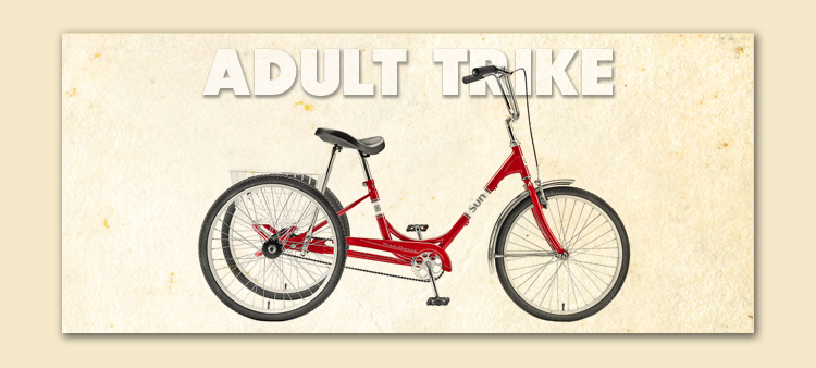 Adult Tricycle rental ft myers fl