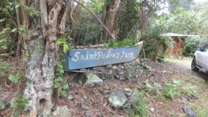 This hillside farm and it's rocky soil supported a variety of cultivated plants including coffee and citrus.