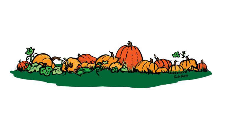 Pumpkin patch design by illustrator Priscilla Prentice