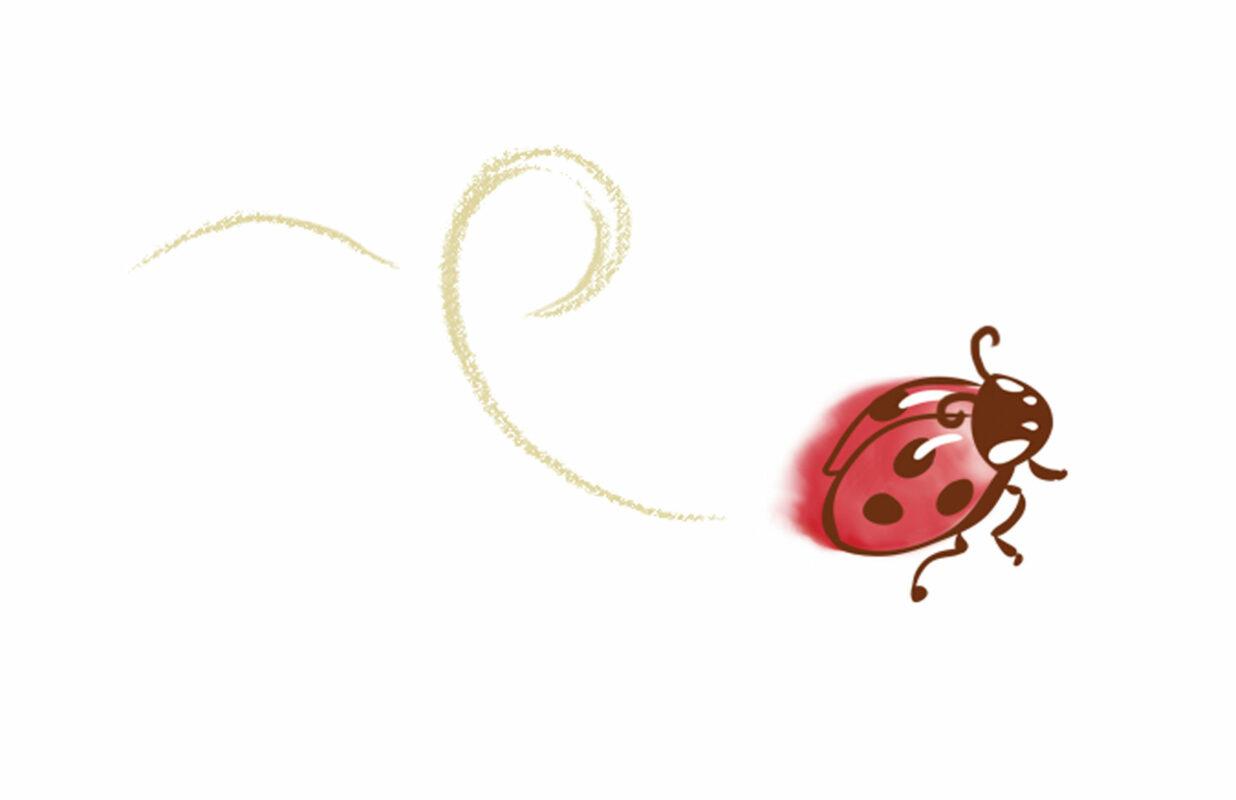 ladybug illustration by Priscilla Prentice