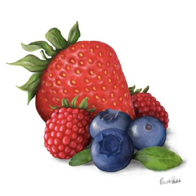 Mixed Berries Illustration of strawberry, raspberry, and blue berries by Illustrator Priscilla Prentice