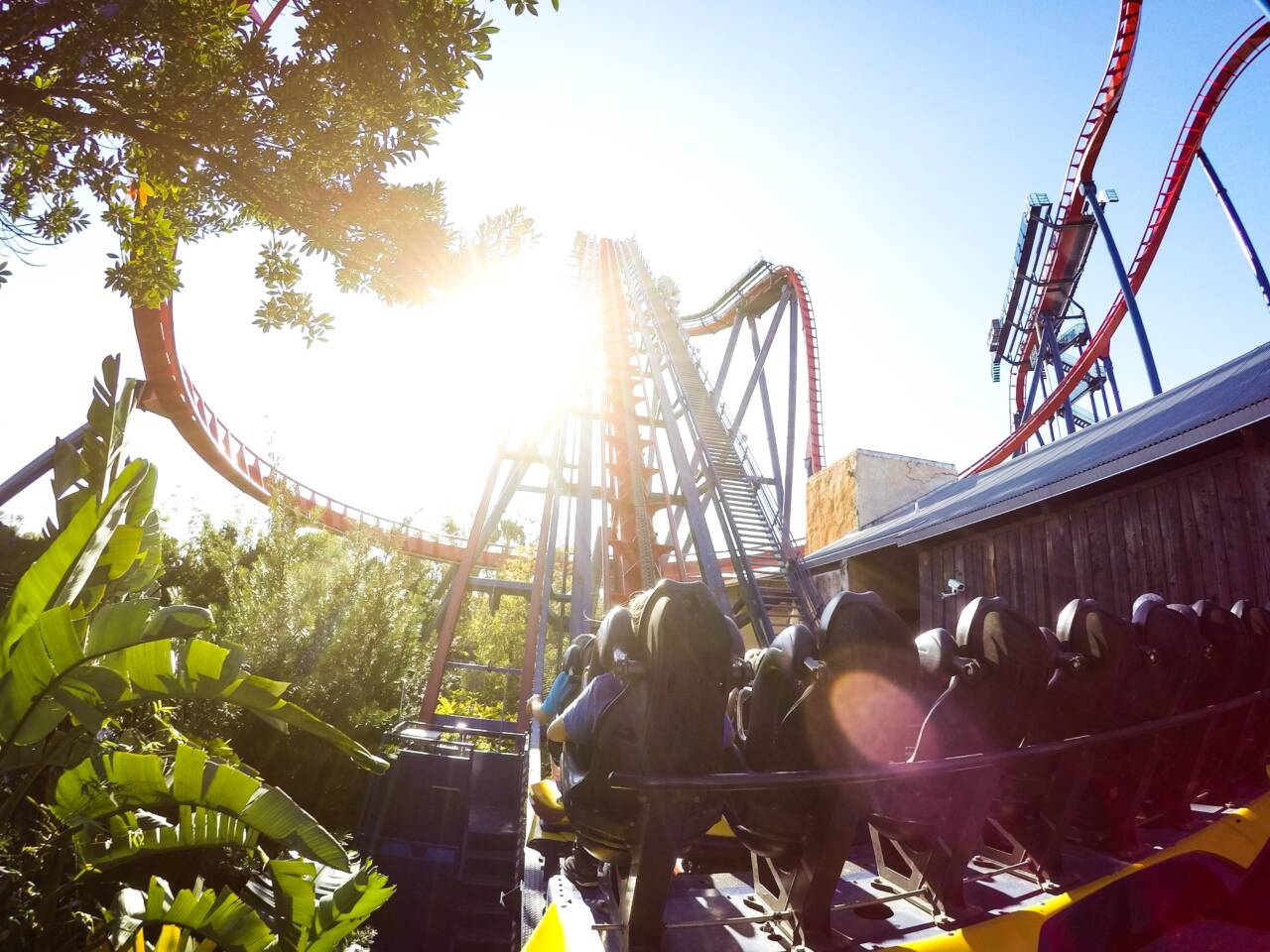 Busch Gardens Tampa Rollercoaster