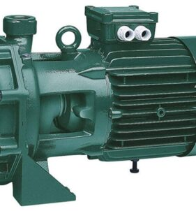 DAB Twin Impeller Water pump. For sale at FarmAbility South Africa