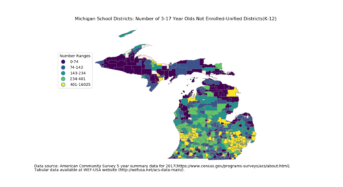 2017 Michigan not317 unsd