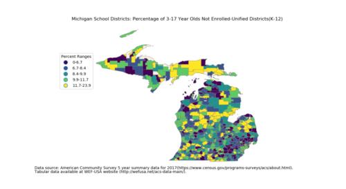 2017 Michigan pnot317 unsd