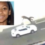 NJ Teen Throws Cat Off Third Floor Balcony Charged (Warning Graphic Video).