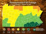Area Is Approaching Best Color For Fall Foliage