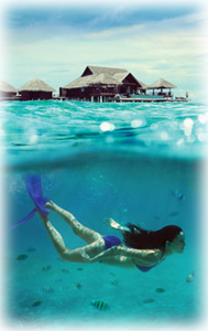 maldives swimming