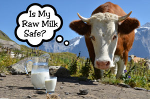 Differing views are held about the safety of raw milk