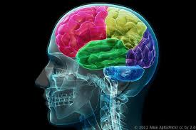 Probing the brain of an idiot or genius will find only the physical matter of the brain itself.