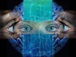 The Magical Precognition Approach