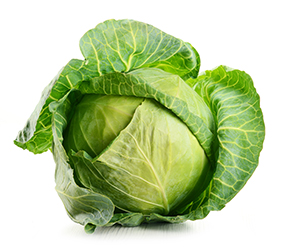 Raw cabbage isolated on white