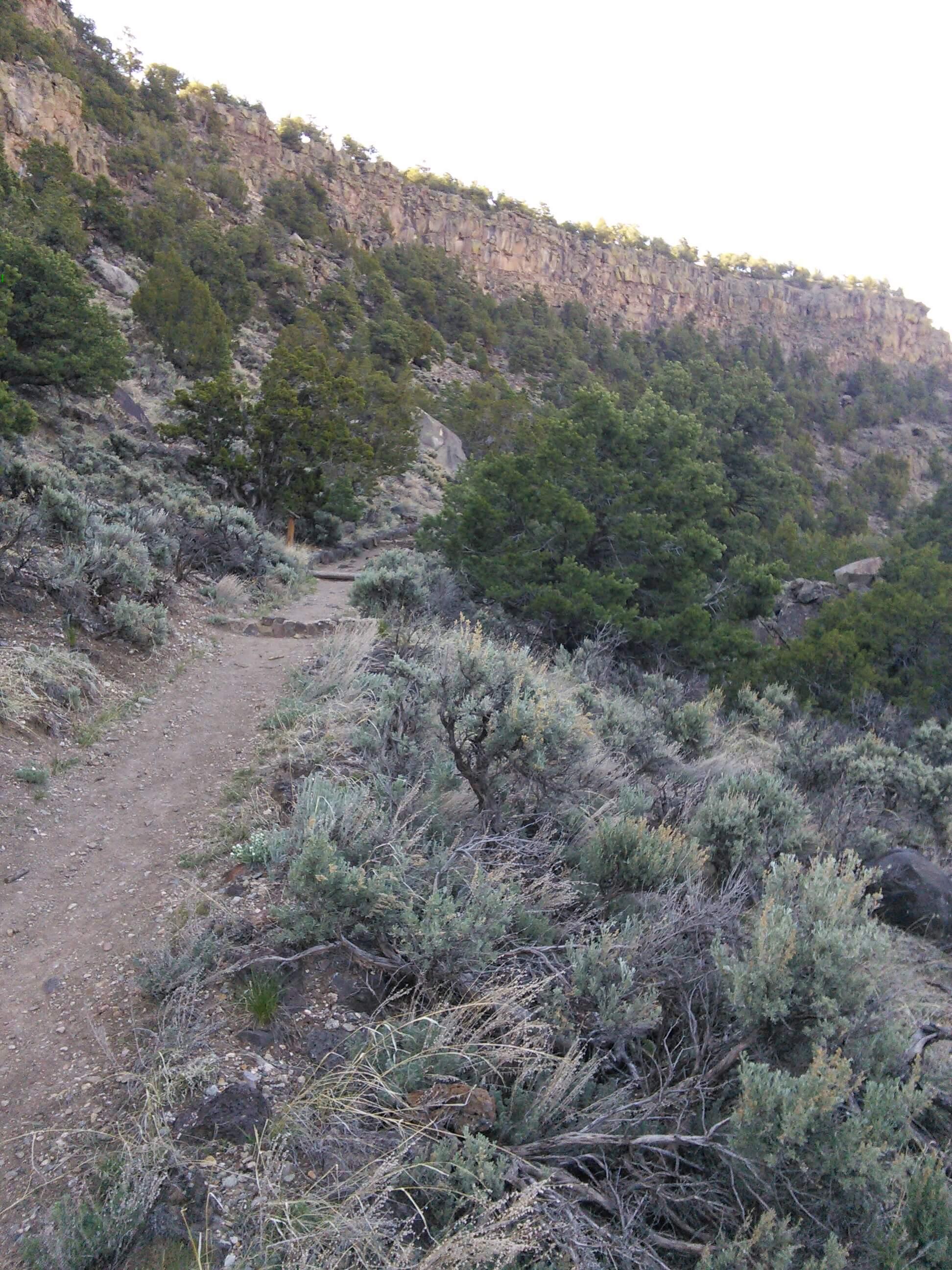 Path to the Rio Grande River, NM