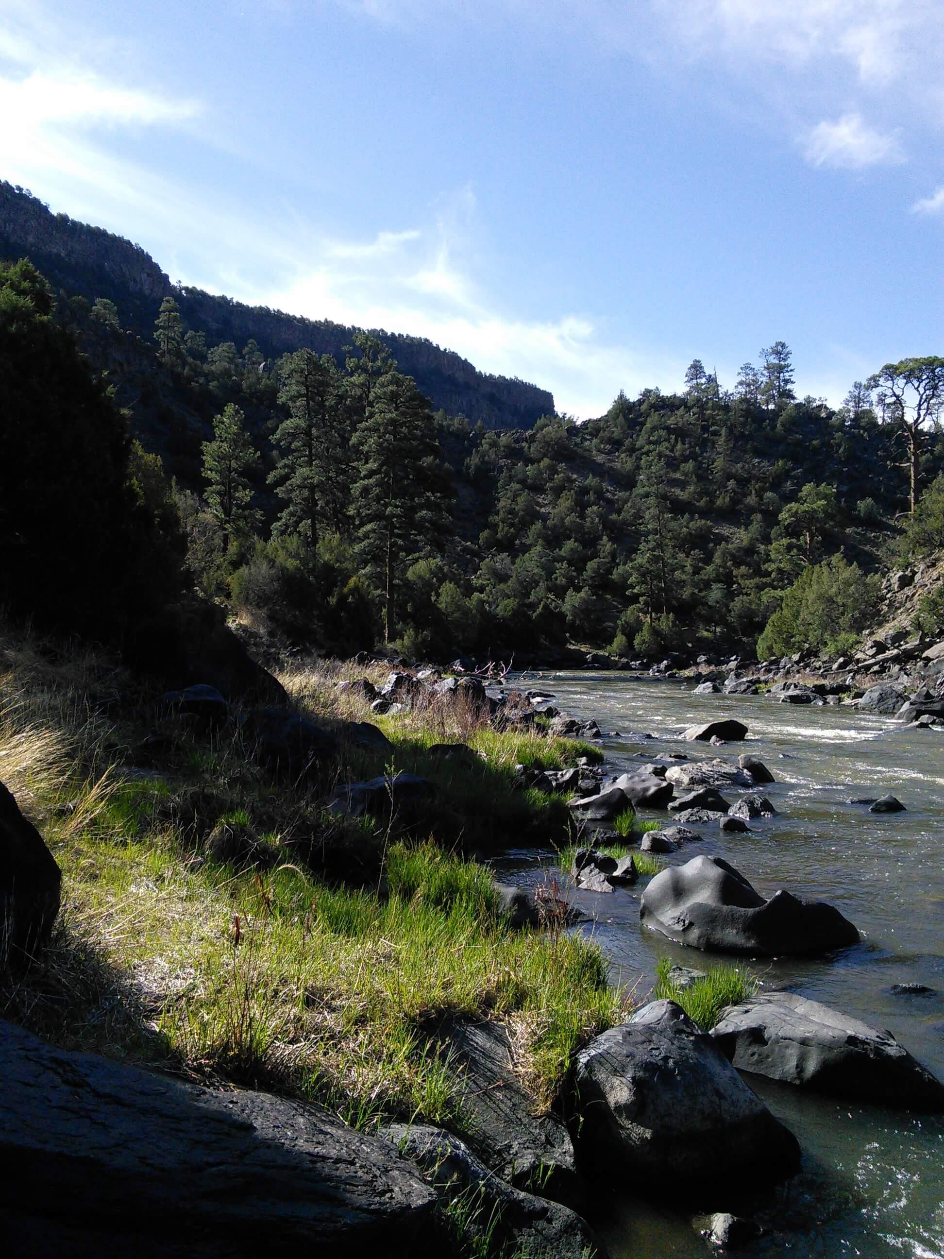 Rio Grande River, NM