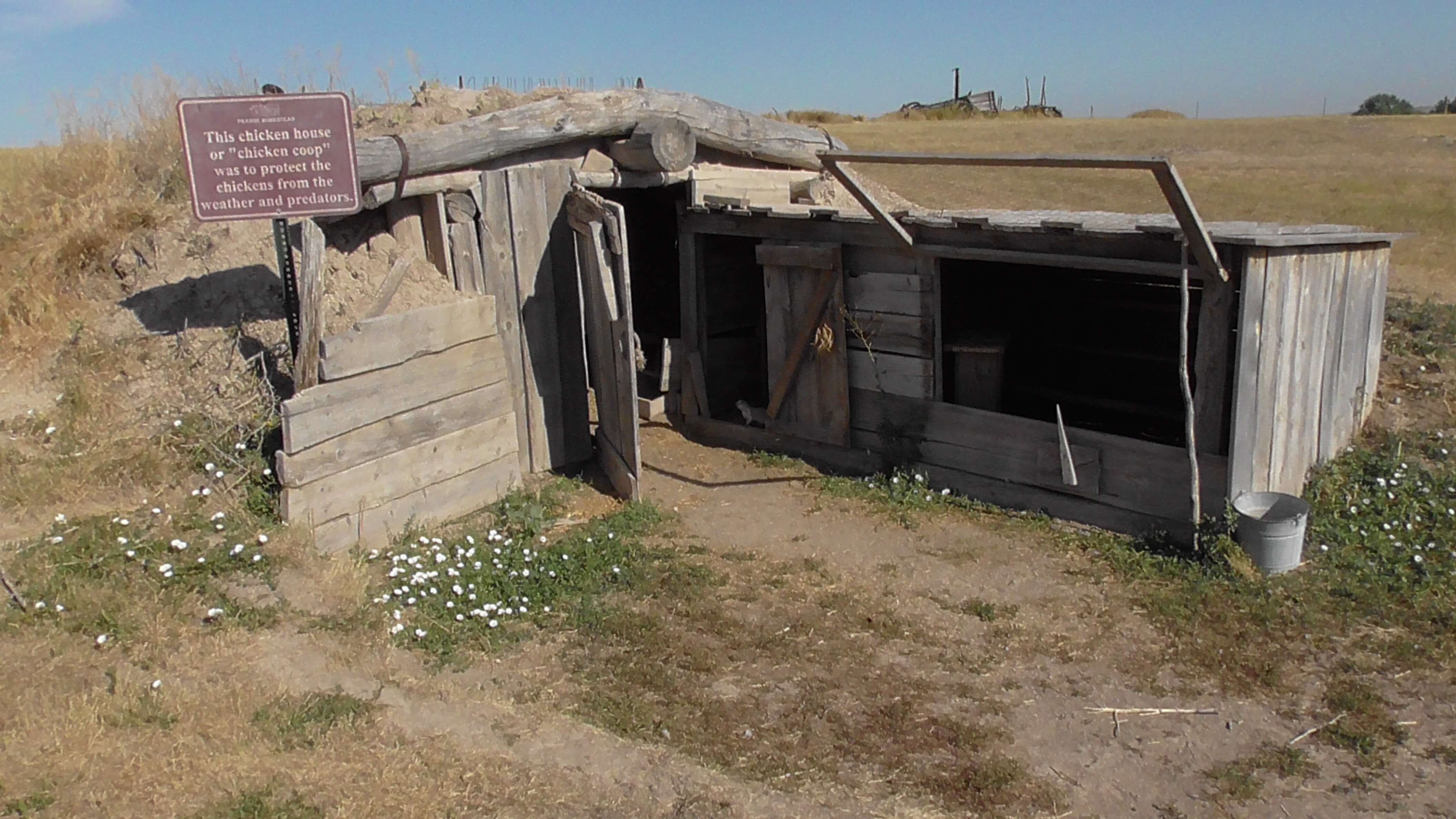 Sod Chicken House