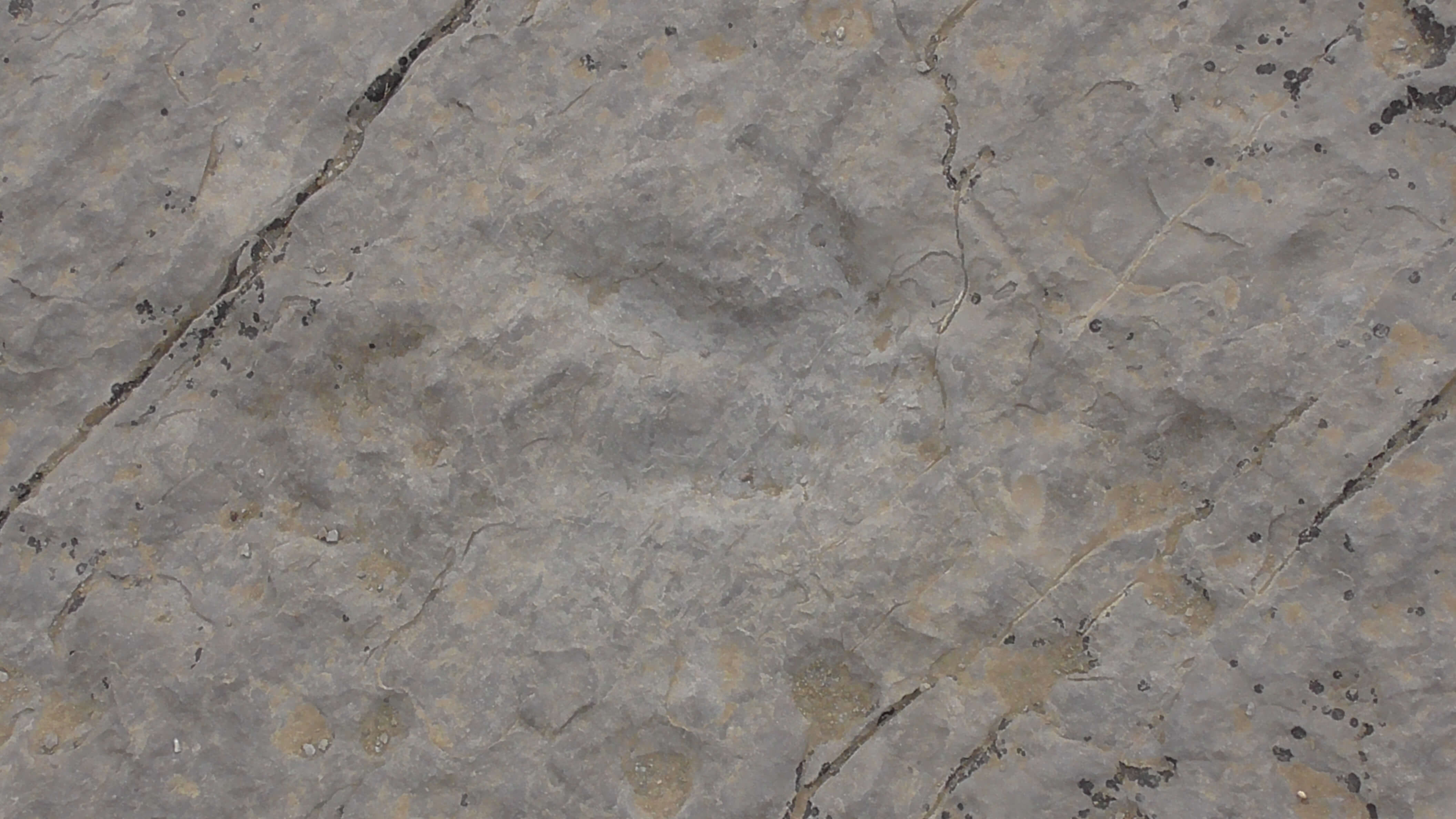 Red Gulch Dinosaur Tracksite, Wyoming