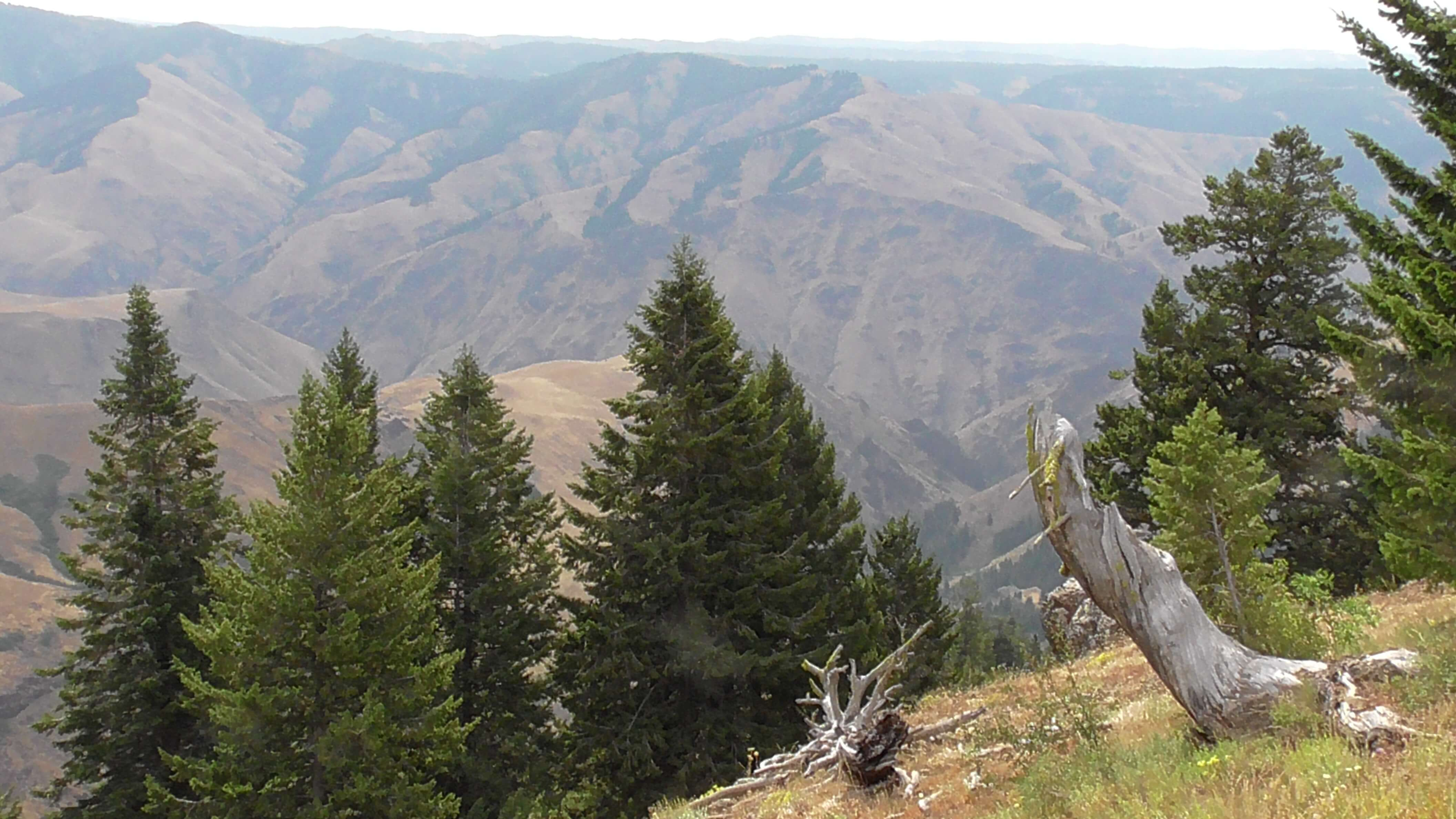 Hell's Canyon Overlook, Idaho