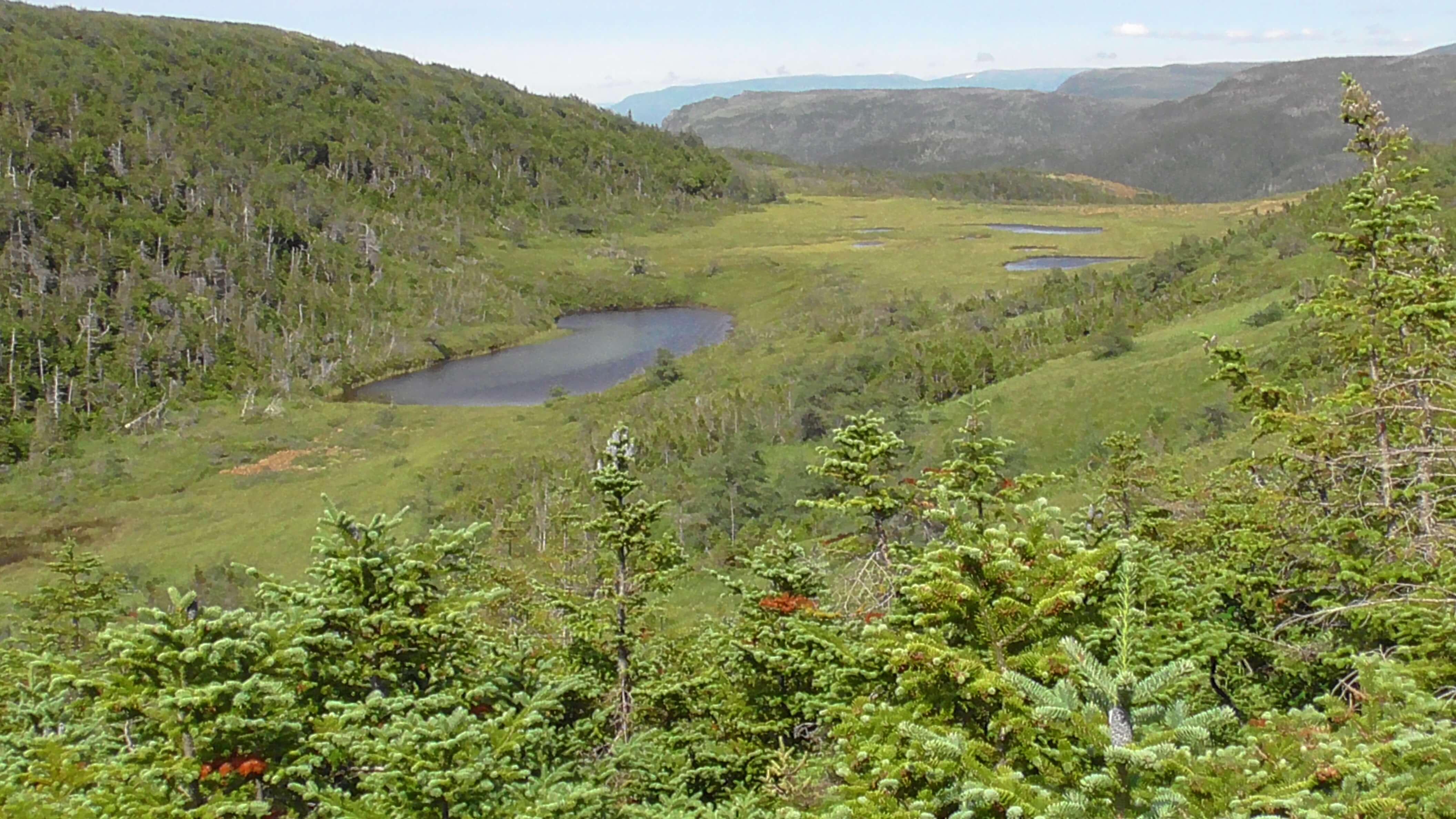 Green Gardens, Gros Morne National Park, Newfoundland