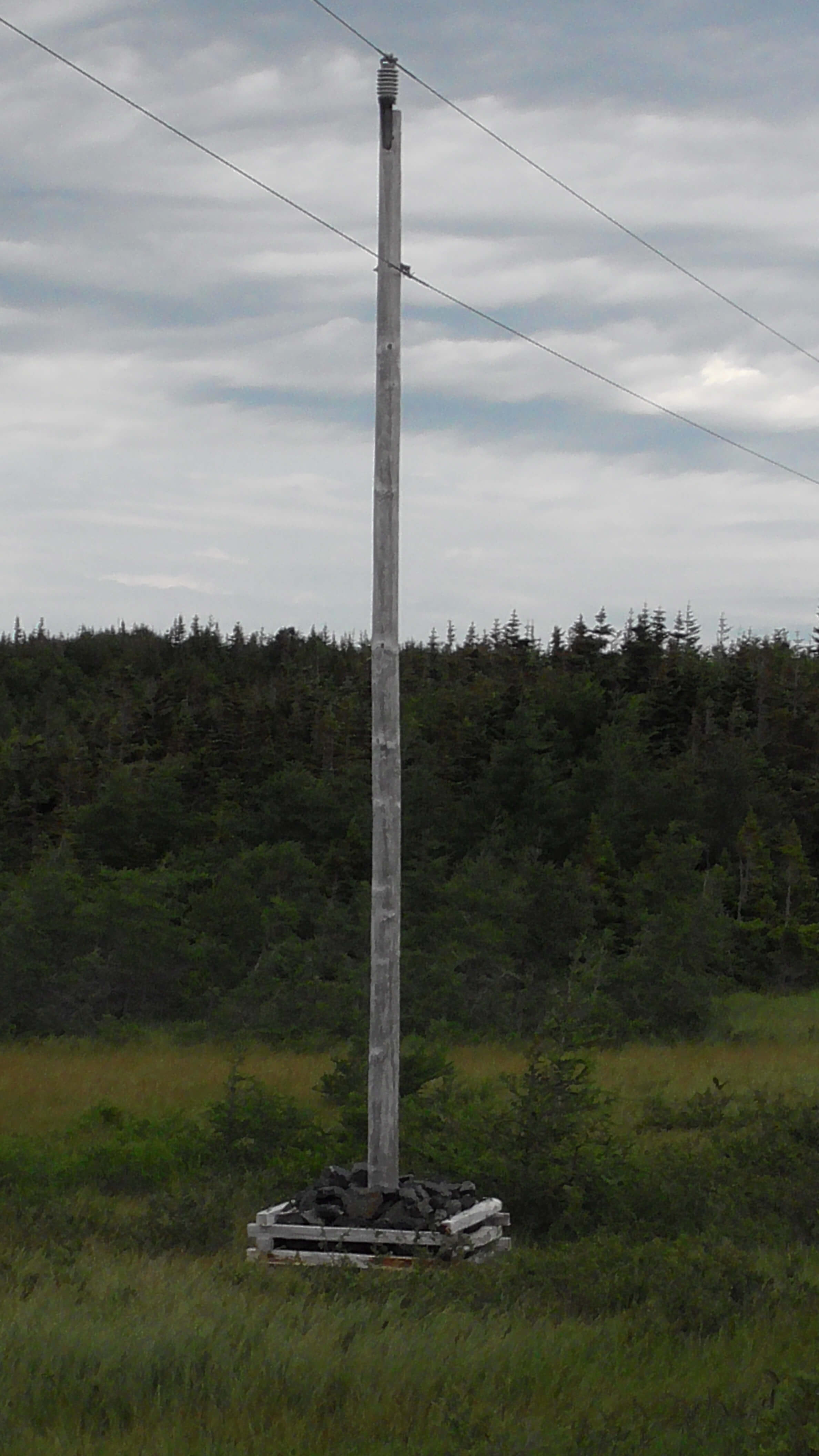 Telephone Pole in Northern Newfoundland