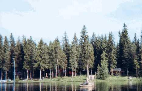 1999-Leighton