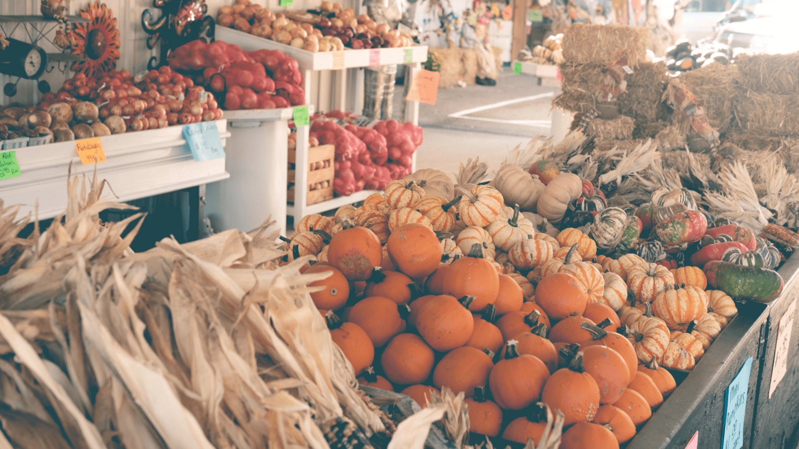 Fall Farmers Market