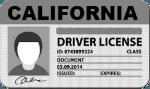 California Driver License
