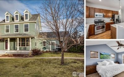 Sold! Cozy & Immaculate Home in Anna's Farm