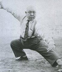 Wang hawk posture
