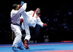 karate fighting