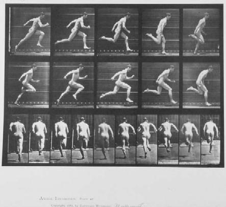 Edward Muybridge Running Sequence