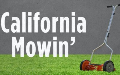 California Kills the Lawn and Garden Industry