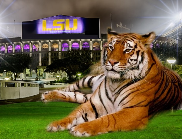 LSU Mourns the loss of Mike the Tiger