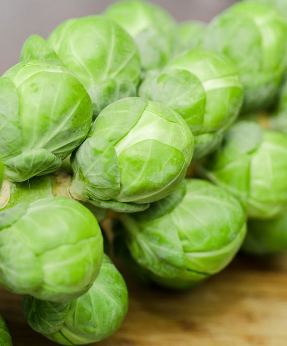 Long Island Brussel Sprouts