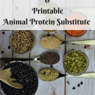 How to Get Adequate Plant-Based Protein, Animal Protein Substitute Printable
