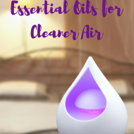 How to Use Essential Oils for Cleaner Air