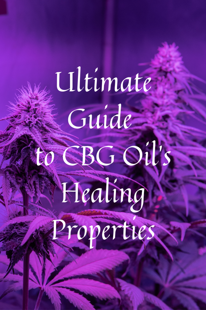 Ultimate Guide to CBG Oil's Healing Properties
